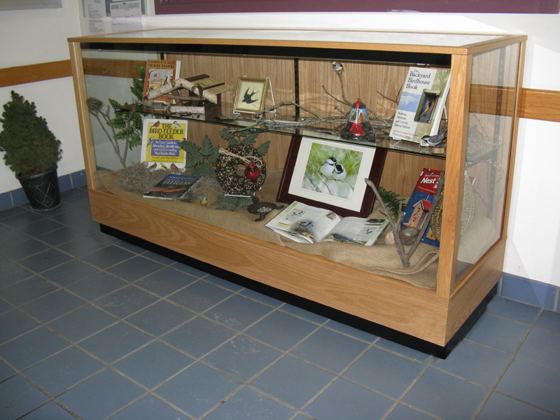 Horizontal Extra Vision Display Case