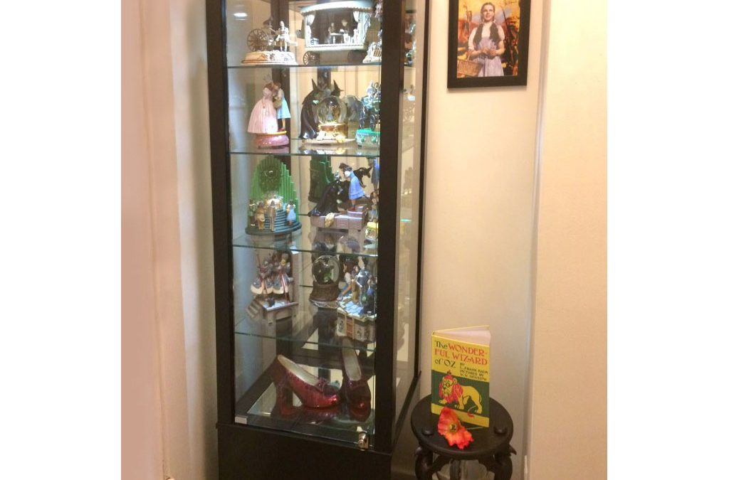 Collector's Display Case