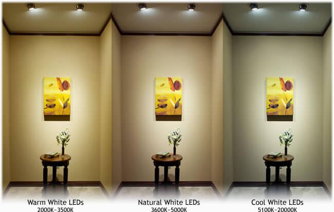 LED Color and Temperature Comparison