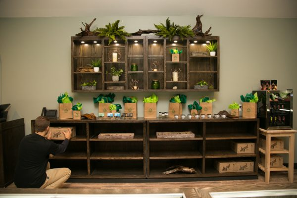 retail cannabis display cases