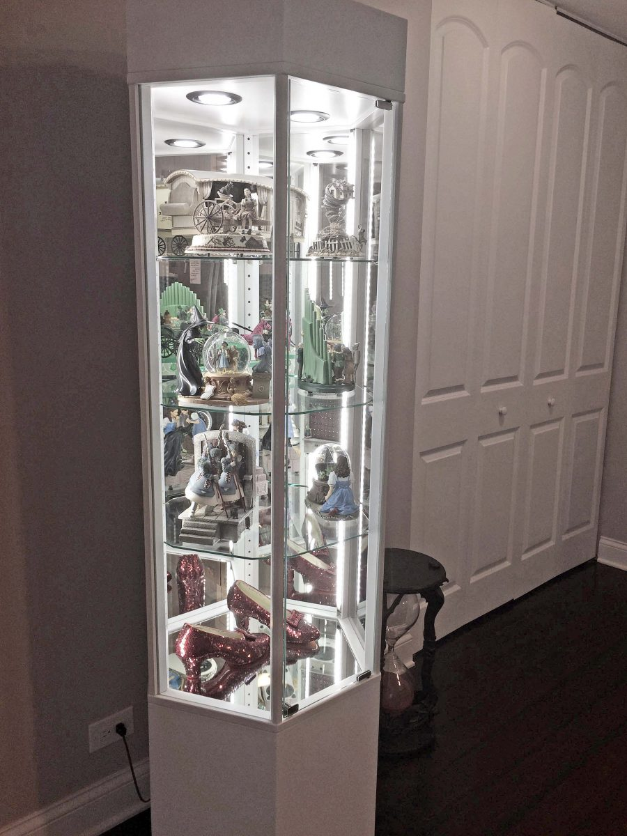 Home Collection Display Case