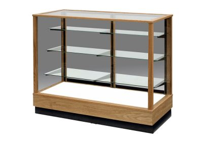 Extra Vision Contemporary Rectangle Horizontal Display Case With Wood Back