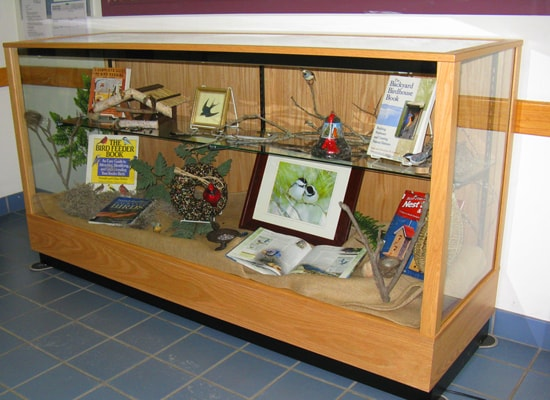 An Extra Vision Contemporary Rectangle Horizontal Display Case Custom Made For A Collector